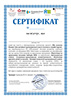 certificate training apon 22 10 2020 sample th